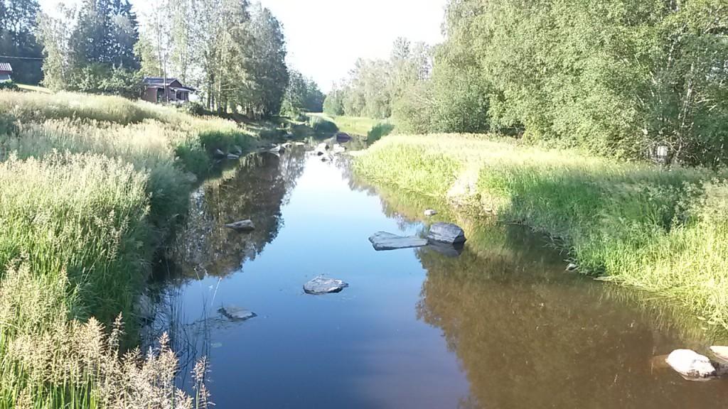 Lågt vatten i Svartån