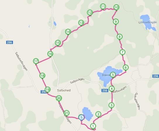 GPS-spåret på morgonturen