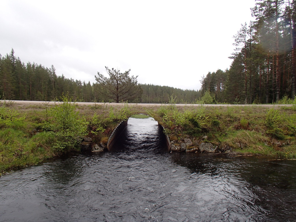 Bron i Nyfors