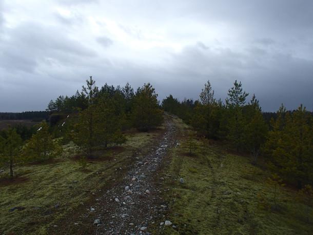 En av de otaliga stigar som gick att följa på åsen